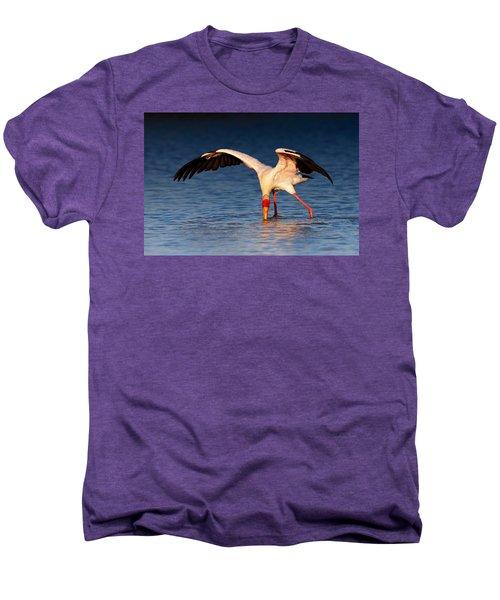 Yellow-billed Stork Hunting For Food Men's Premium T-Shirt