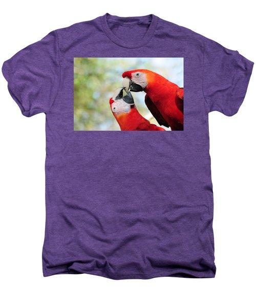 Macaws Men's Premium T-Shirt