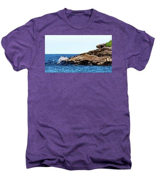 Herring Gull Picnic Men's Premium T-Shirt