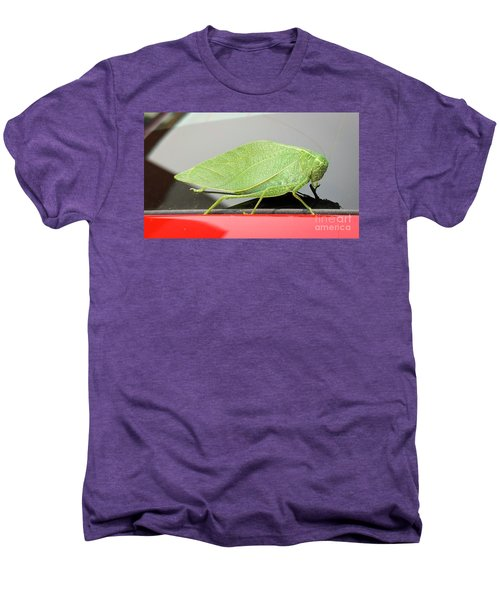 Katydids- Bush Crickets Men's Premium T-Shirt