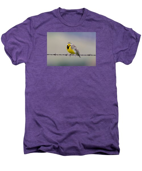 Meadowlark Stare Men's Premium T-Shirt by Marc Crumpler