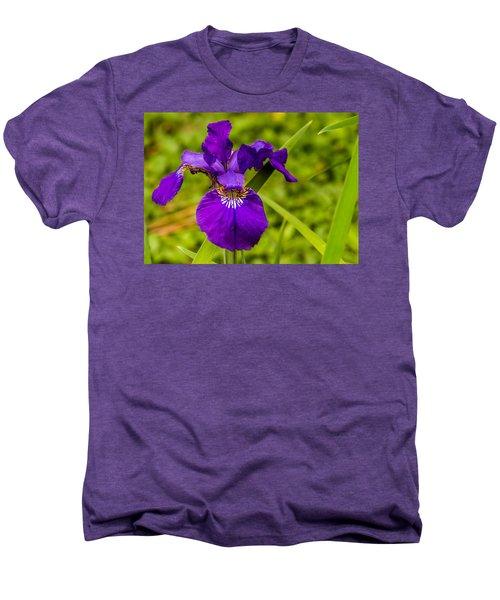 Purple Beauty Men's Premium T-Shirt