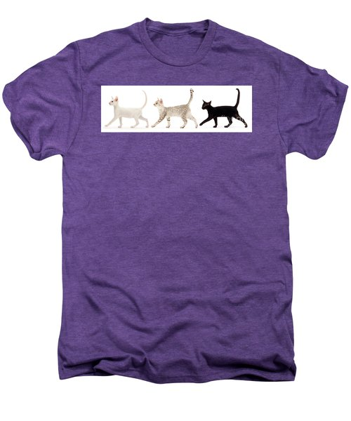 The Kits Parade - Three Men's Premium T-Shirt