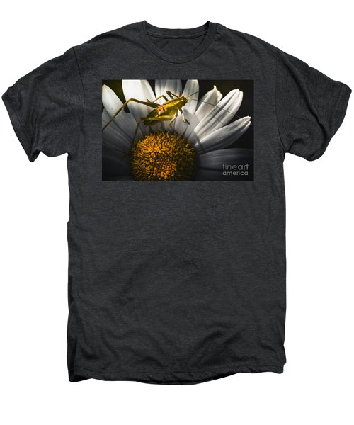 Australian Grasshopper On Flowers. Spring Concept Men's Premium T-Shirt