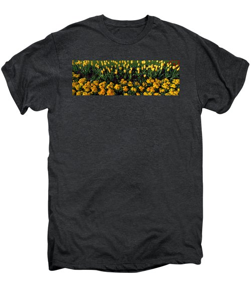Flowers In Hyde Park, City Men's Premium T-Shirt