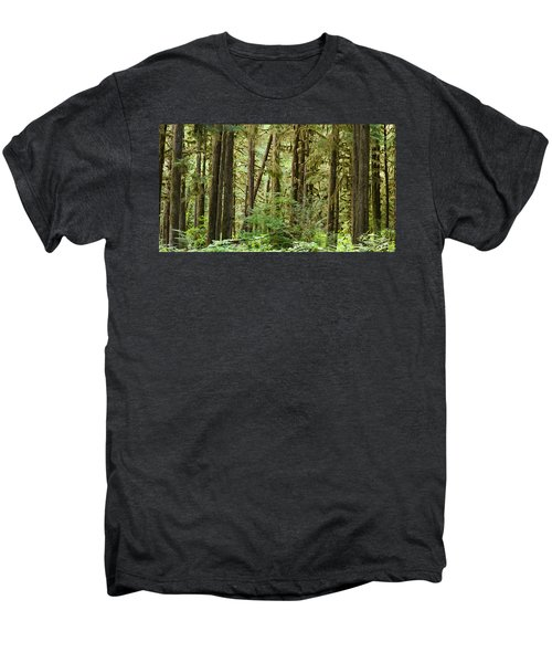 Trees In A Forest, Quinault Rainforest Men's Premium T-Shirt