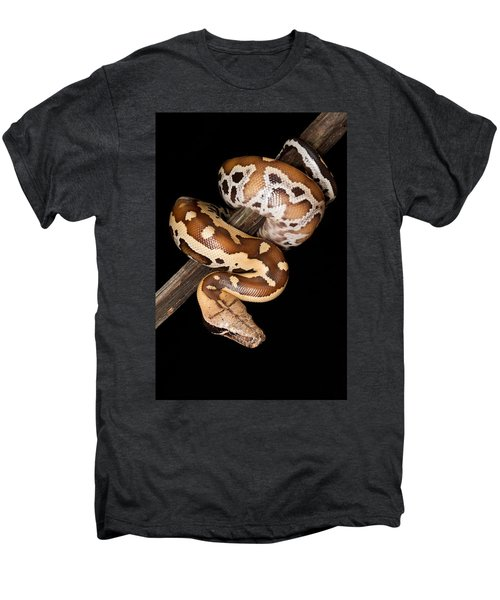 Blood Python Python Brongersmai Men's Premium T-Shirt by David Kenny
