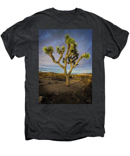 Afternoon Glow Men's Premium T-Shirt