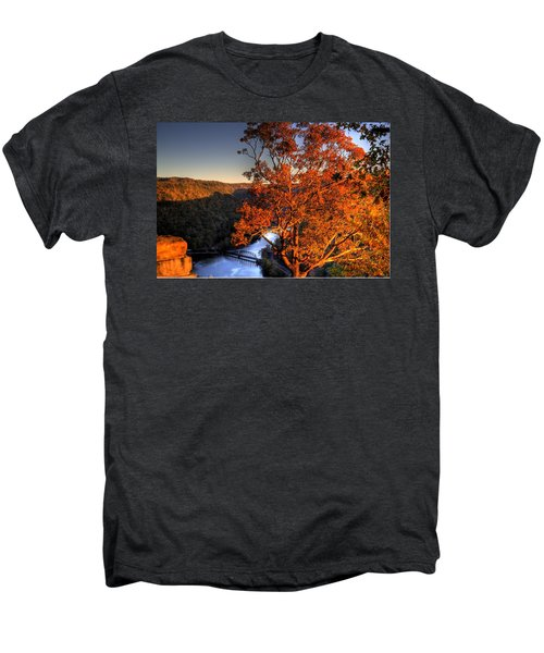 Amazing Tree At Overlook Men's Premium T-Shirt