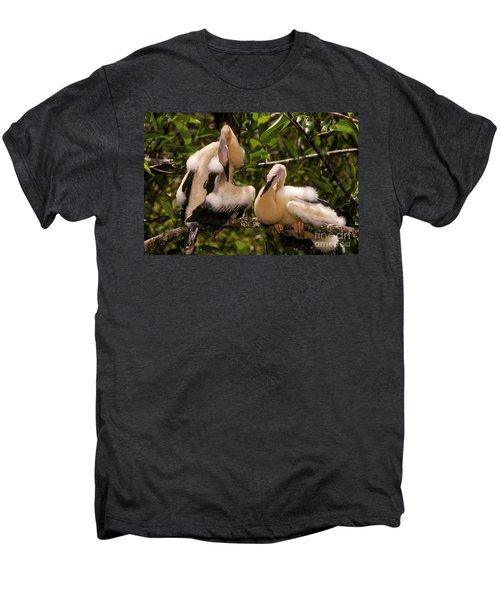Anhinga Chicks Men's Premium T-Shirt