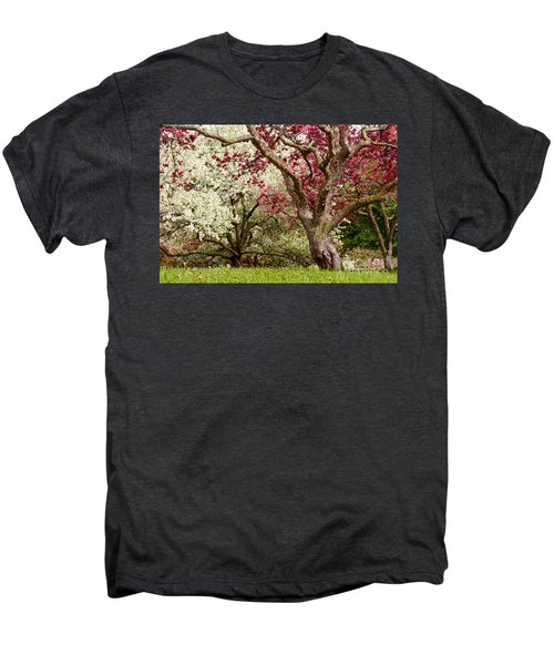Apple Blossom Colors Men's Premium T-Shirt by Joe Mamer