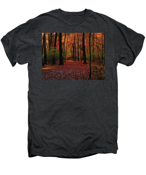 Autumn IIi Men's Premium T-Shirt