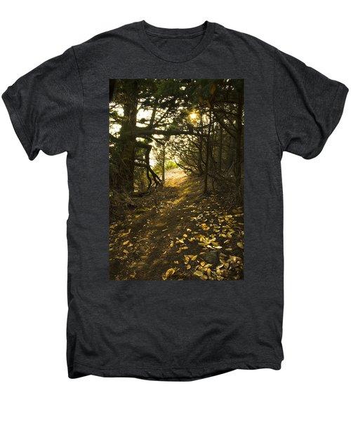 Autumn Trail In Woods Men's Premium T-Shirt by Yulia Kazansky