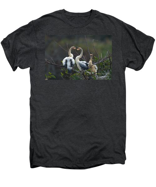Baby Anhinga Men's Premium T-Shirt by Mark Newman