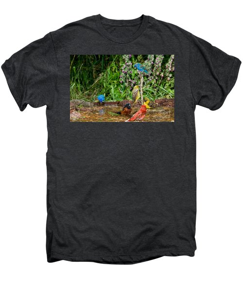 Birds Bathing Men's Premium T-Shirt by Anthony Mercieca