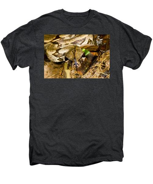 Boa Constrictor Men's Premium T-Shirt by Gregory G. Dimijian, M.D.