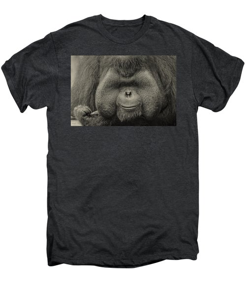 Bornean Orangutan II Men's Premium T-Shirt by Lourry Legarde