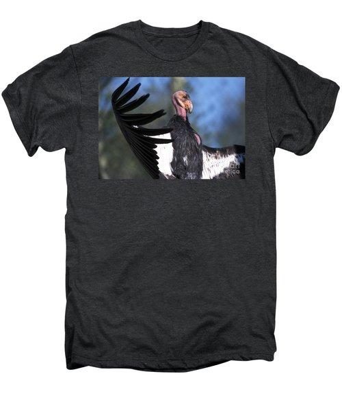 California Condor Men's Premium T-Shirt