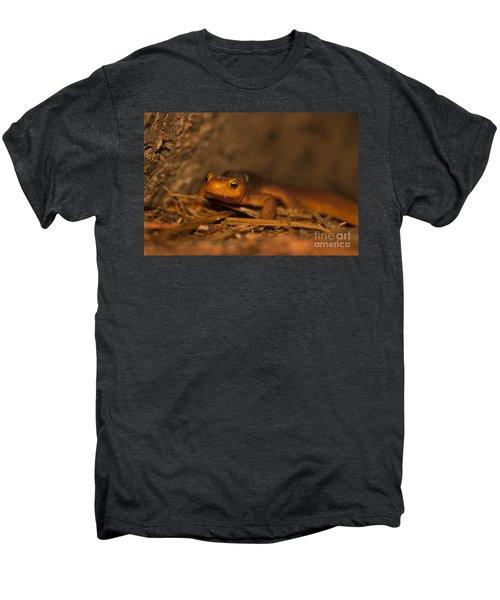 California Newt Men's Premium T-Shirt by Ron Sanford