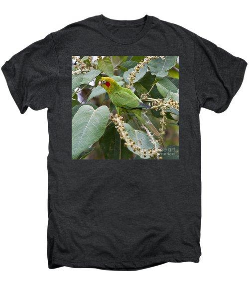Chiriqui Conure 2 Men's Premium T-Shirt by Heiko Koehrer-Wagner