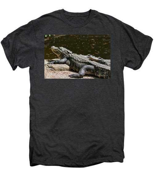 Comfy Cozy Men's Premium T-Shirt by Lois Bryan