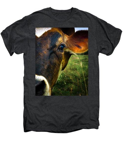 Cow Eating Grass Men's Premium T-Shirt by Bob Orsillo