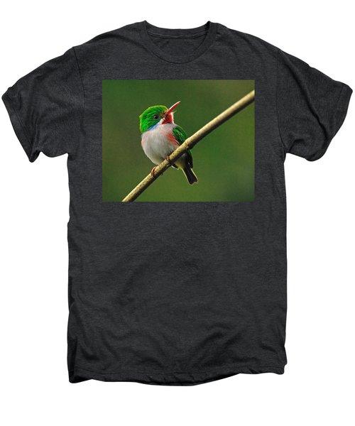 Cuban Tody Men's Premium T-Shirt by Tony Beck