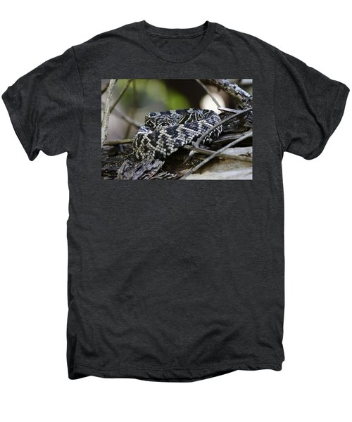 Eastern Diamondback-1 Men's Premium T-Shirt by Rudy Umans