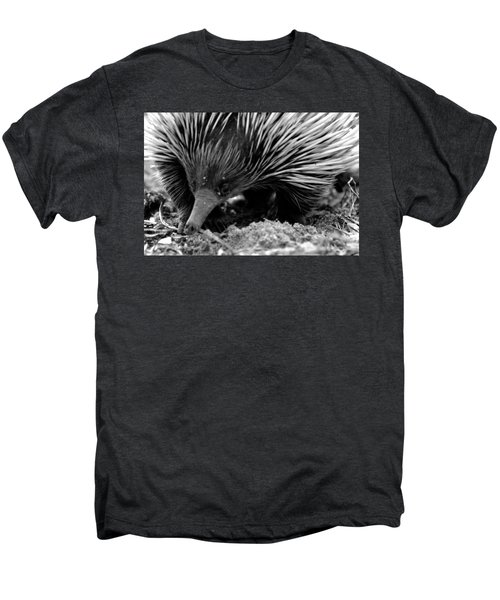 Echidna Men's Premium T-Shirt by Miroslava Jurcik