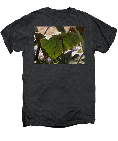 Elephant Ear Men's Premium T-Shirt by James Peterson