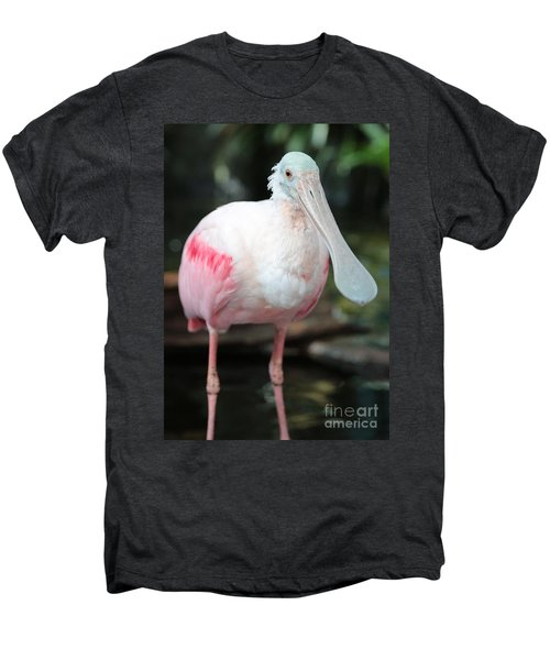 Friendly Spoonbill Men's Premium T-Shirt by Carol Groenen