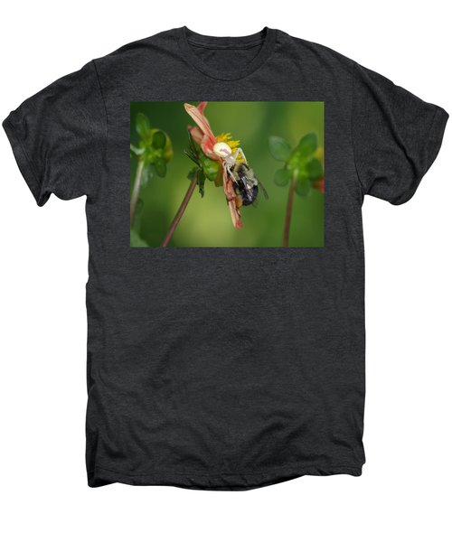 Goldenrod Spider Men's Premium T-Shirt by James Peterson