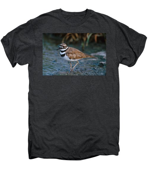 Killdeer Men's Premium T-Shirt