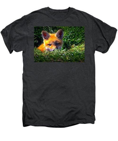 Little Red Fox Men's Premium T-Shirt