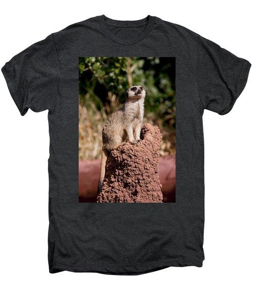 Lookout Post Men's Premium T-Shirt