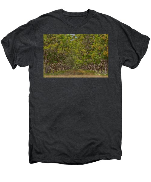 Mango Orchard Men's Premium T-Shirt by Douglas Barnard
