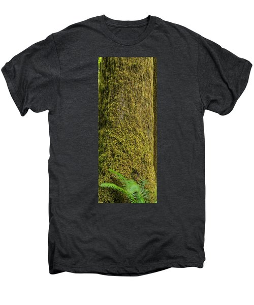 Moss Covered Tree Olympic National Park Men's Premium T-Shirt