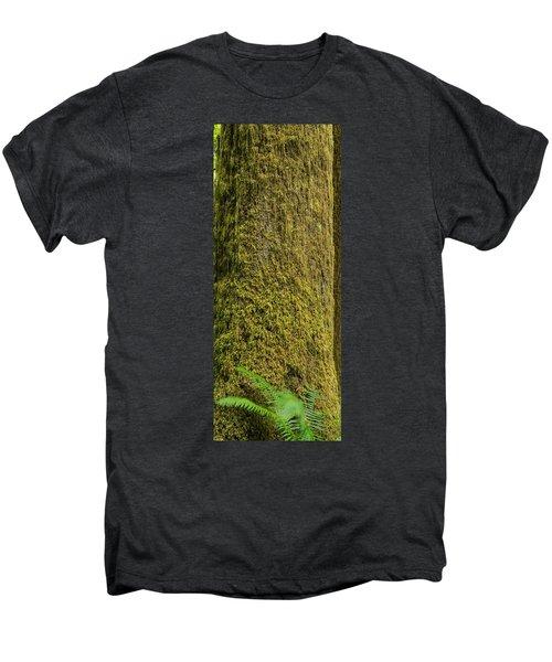 Moss Covered Tree Olympic National Park Men's Premium T-Shirt by Steve Gadomski