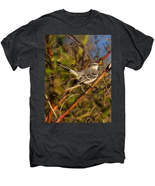 Northern Mockingbird Men's Premium T-Shirt