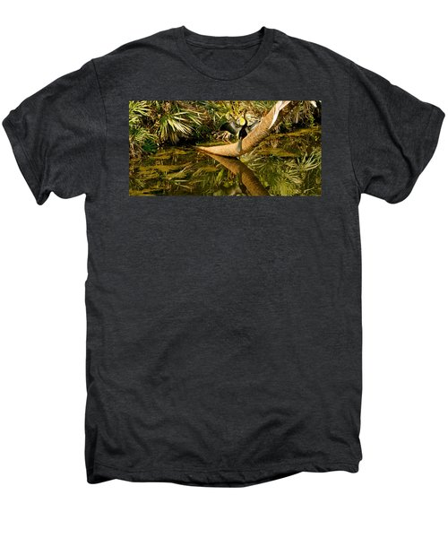 Oriental Darter Anhinga Melanogaster Men's Premium T-Shirt by Panoramic Images
