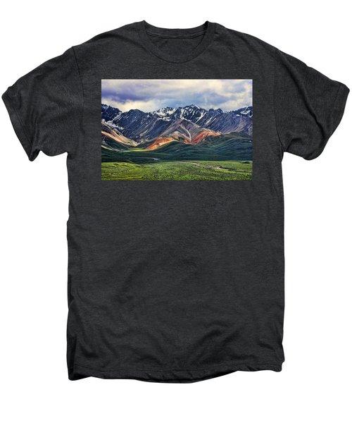 Polychrome Men's Premium T-Shirt