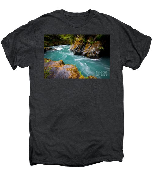 Quinault River Bend Men's Premium T-Shirt