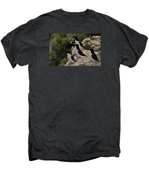 Razorbill Cliff Men's Premium T-Shirt by Dreamland Media