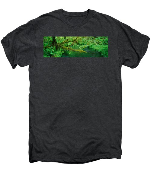 Stream Flowing Through A Rainforest Men's Premium T-Shirt