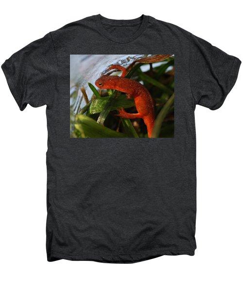 Travels Of A Newt Men's Premium T-Shirt