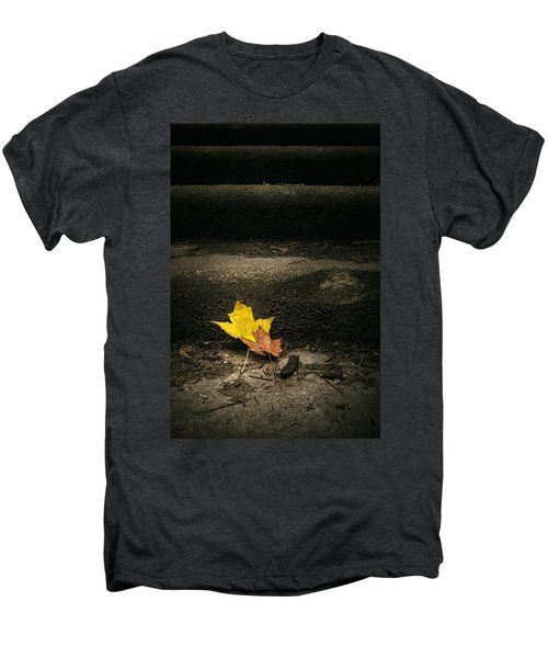 Two Leaves On A Staircase Men's Premium T-Shirt