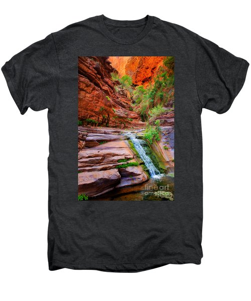 Upper Elves Chasm Cascade Men's Premium T-Shirt by Inge Johnsson