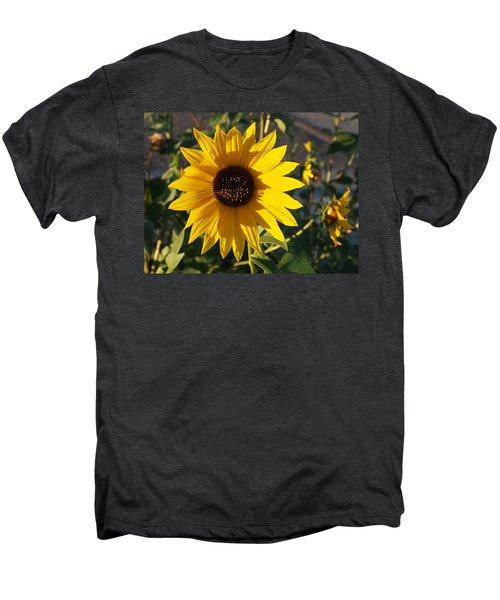 Wild Sunflower Men's Premium T-Shirt