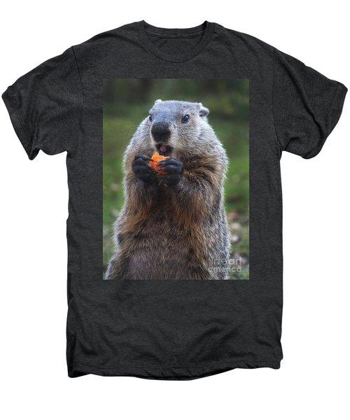 Yum-yum Men's Premium T-Shirt