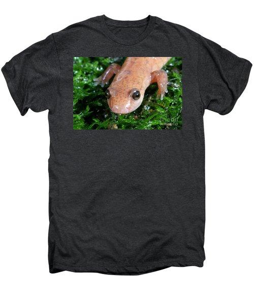 Spring Salamander Men's Premium T-Shirt by Ted Kinsman